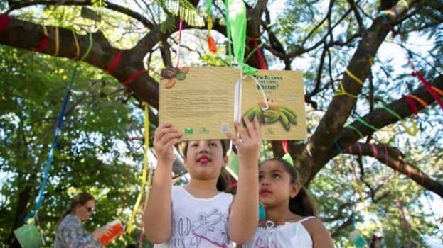 Feira Literária de Bonito chega à terceira edição destacando mulheres na literatura