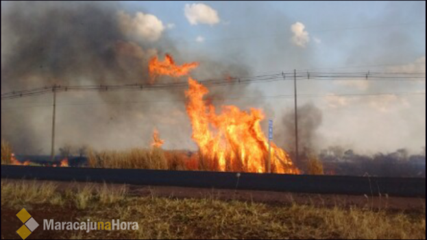 Maracaju em chamas: incêndios destroem lavoura, vegetação e deixa vítima gravemente ferida